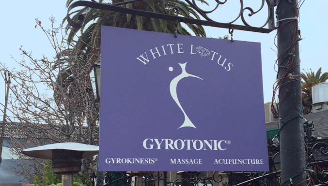 White Lotus Gyrotonic